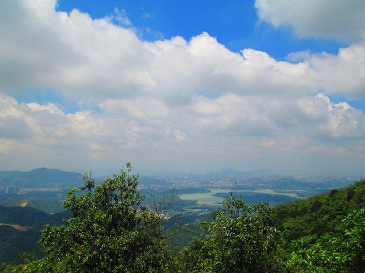 深圳羊台山的风景