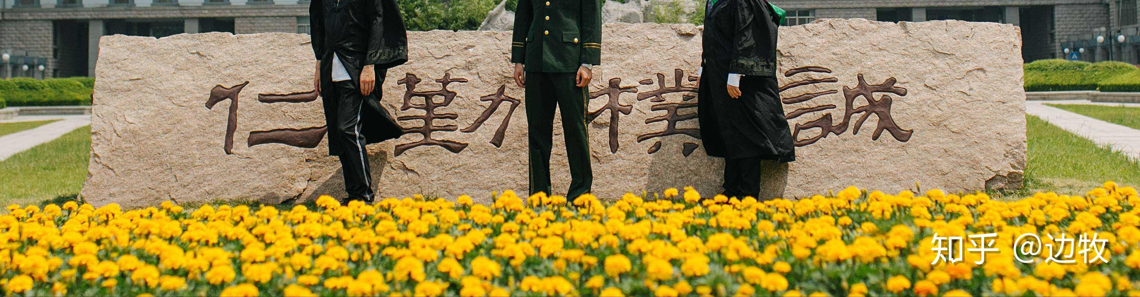 壁纸 成片种植 风景 植物 种植基地 桌面 3708_966