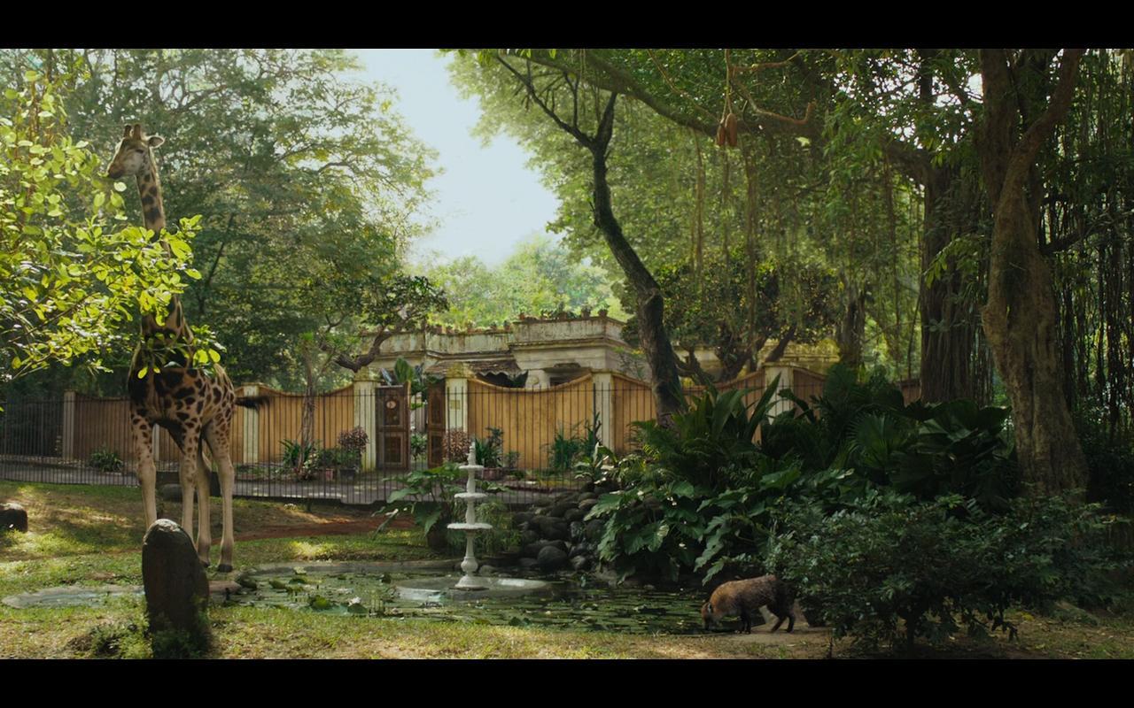 摄影 高光/影片最开始是派家里动物园的介绍,从这一帧的情况来看,高光被...