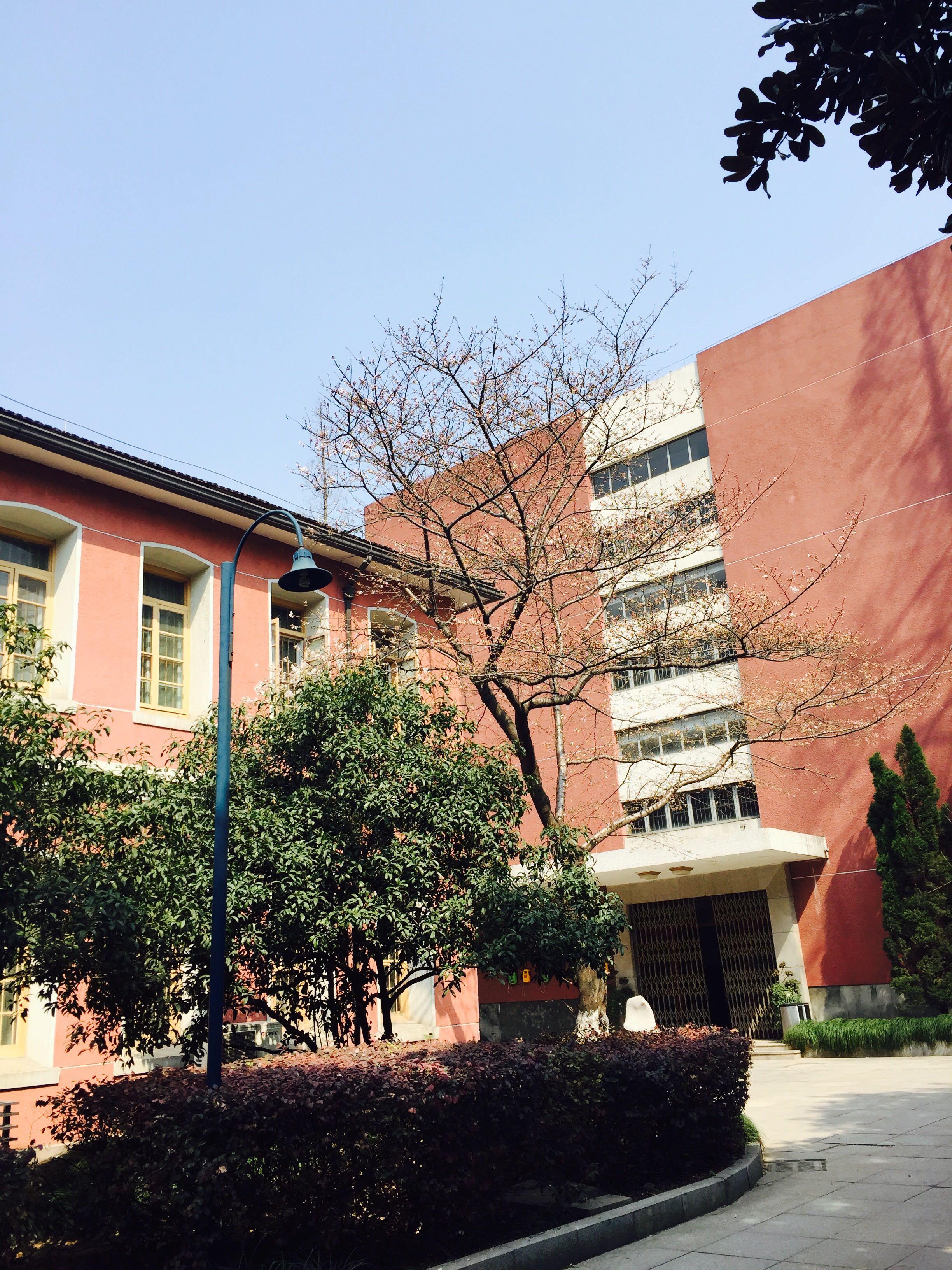 在浙江省杭州高级中学就读是一番的体验?哪隆回县几有高中所?图片