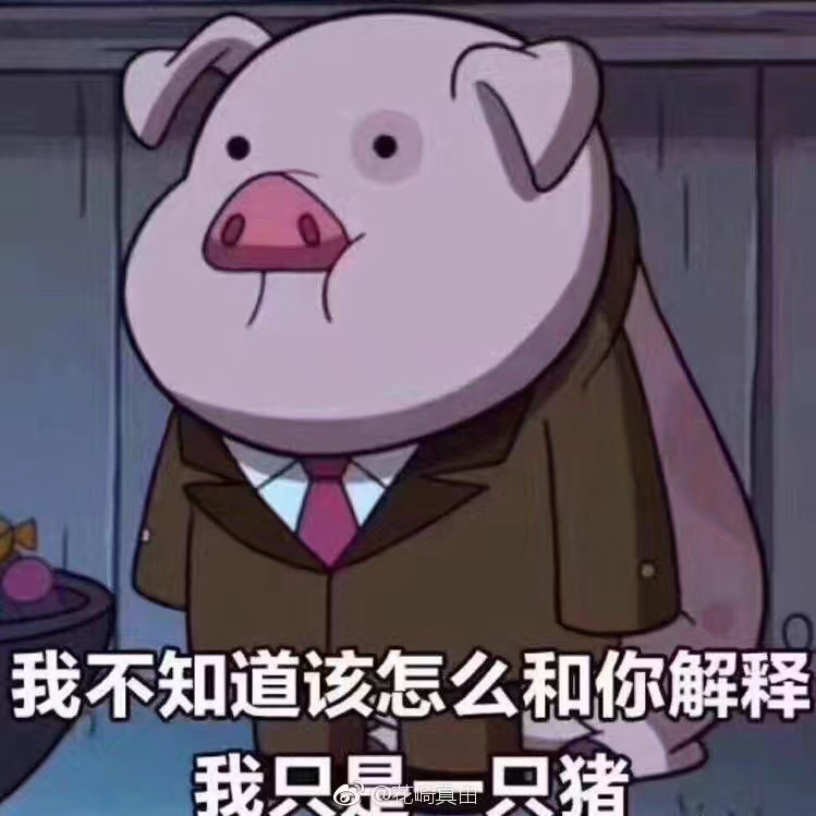 有哪些猪的搞笑图片或者表情?对得说字带表情包图片图片