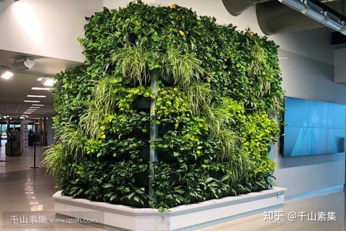 人造植物墙市场_植物墙厂家_人造植物墙效果