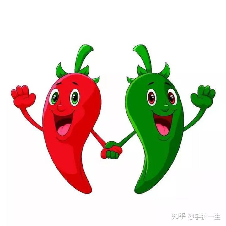 辣椒植物矢量图