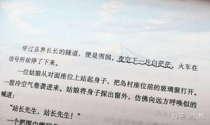 小说名字:哪部小说的开头堪称神来之笔?作者:爱丽丝
