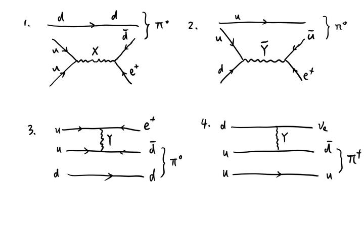 质子会衰变的依据是什么?