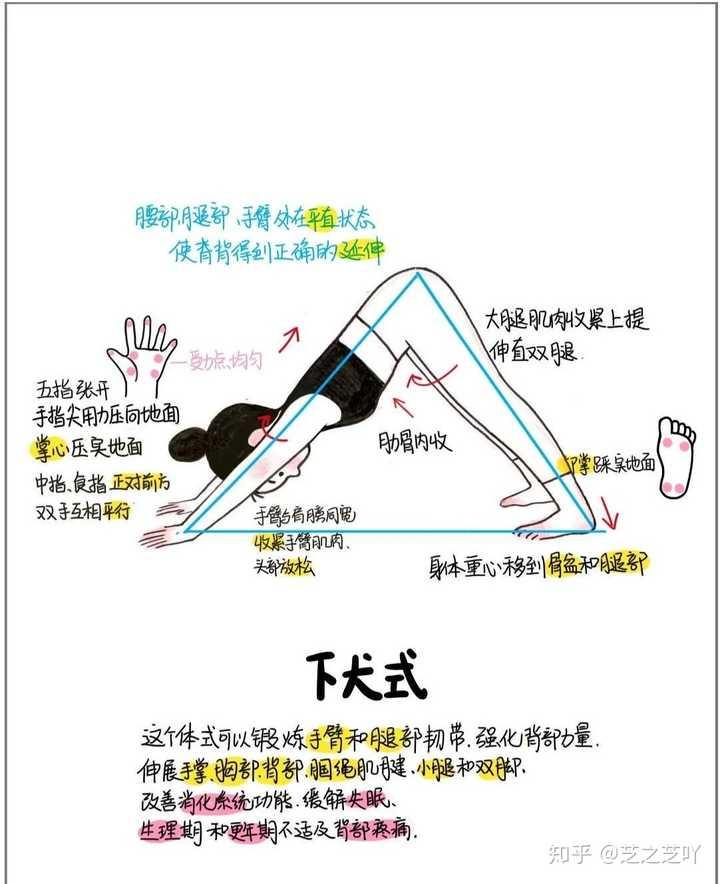 初学者学瑜伽用什么牌子的瑜伽垫会比较好?