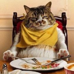吃吃吃就知道吃!
