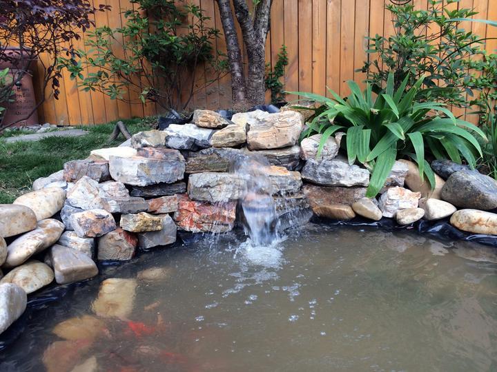 庭院建造池塘的造景过程【转自weibo:@马锐拉】插图(31)