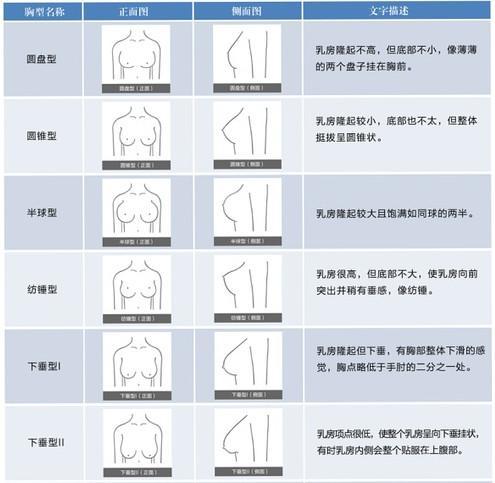 女人胸部有什么形状_女生如何选择合适的内衣内衣穿对了是什么样的感受? - 知乎