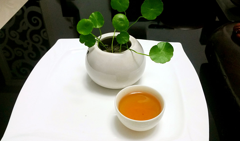 利尿 作用 烏龍茶