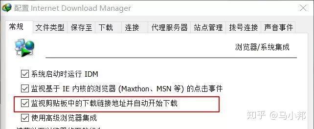 IDM互联网下载管理器 资源下载 瞎扒瞎闹 第7张