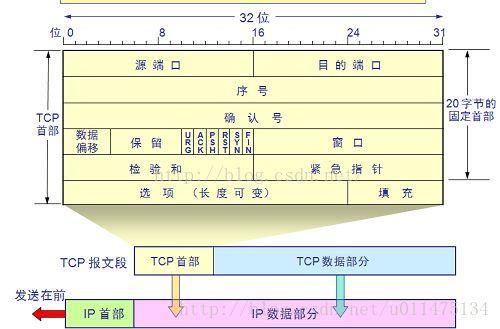 TCP 首部格式