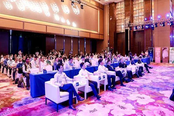 """南国企业集团董事长刘汉惜受邀参加""""2021新消费""""企业家领袖峰会"""