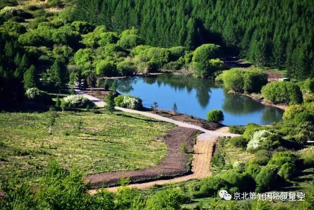 公園 京北 森林