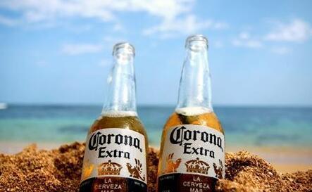 科罗娜啤酒价钱(科罗娜好喝吗)