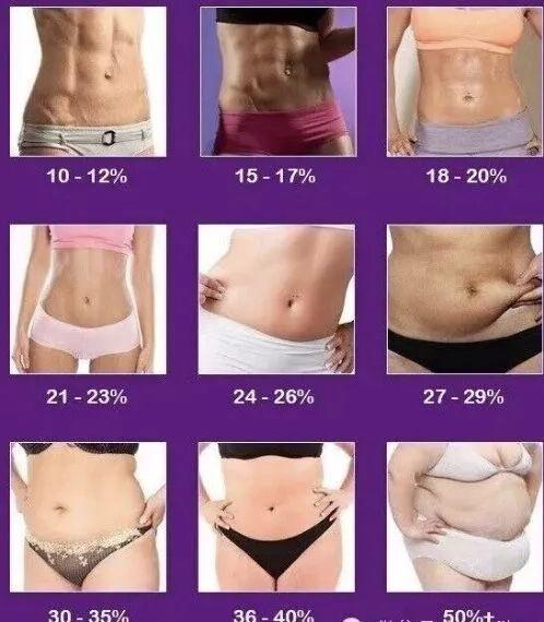 脂肪 率 代 女性 体 50