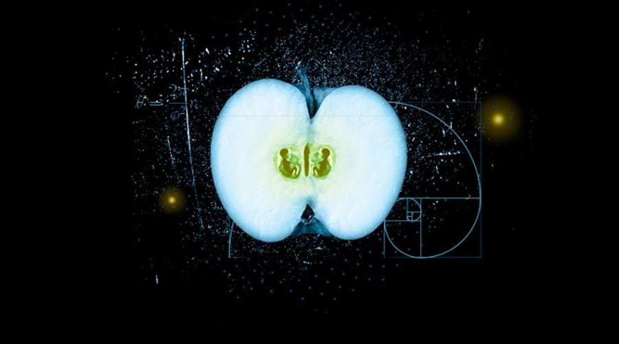 说说 Mac 分屏的事(1) - Split View