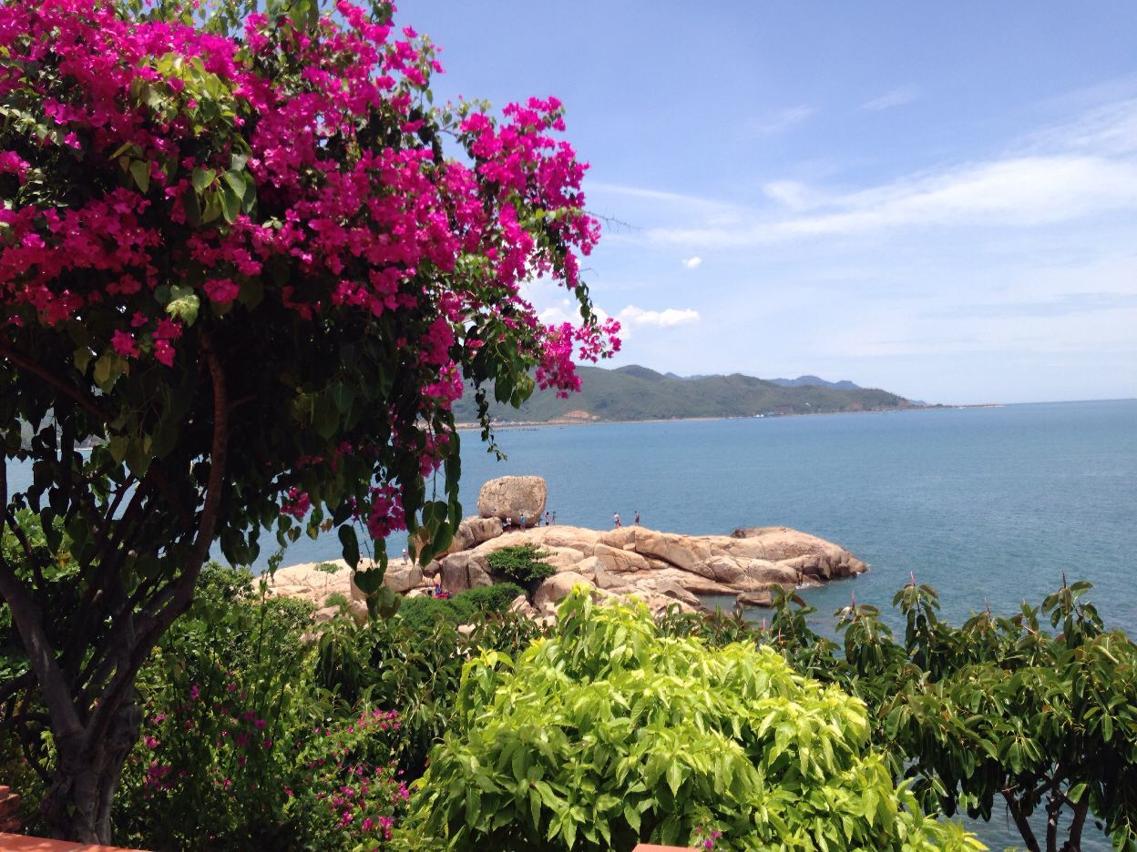 咖啡 越南 免费/这是五指岩,免费,里面的咖啡和茶要钱,不过也很便宜,2万越南...
