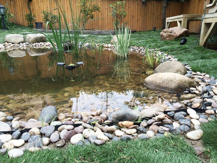 庭院建造池塘的造景过程【转自weibo:@马锐拉】插图(35)