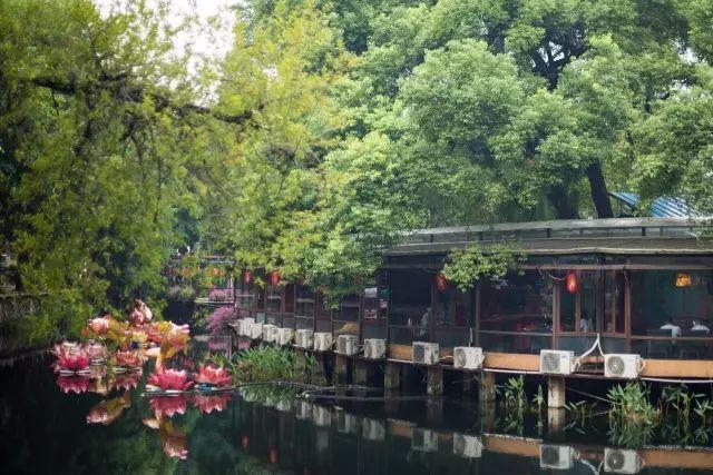 广州有什么好玩又不费钱的地方?