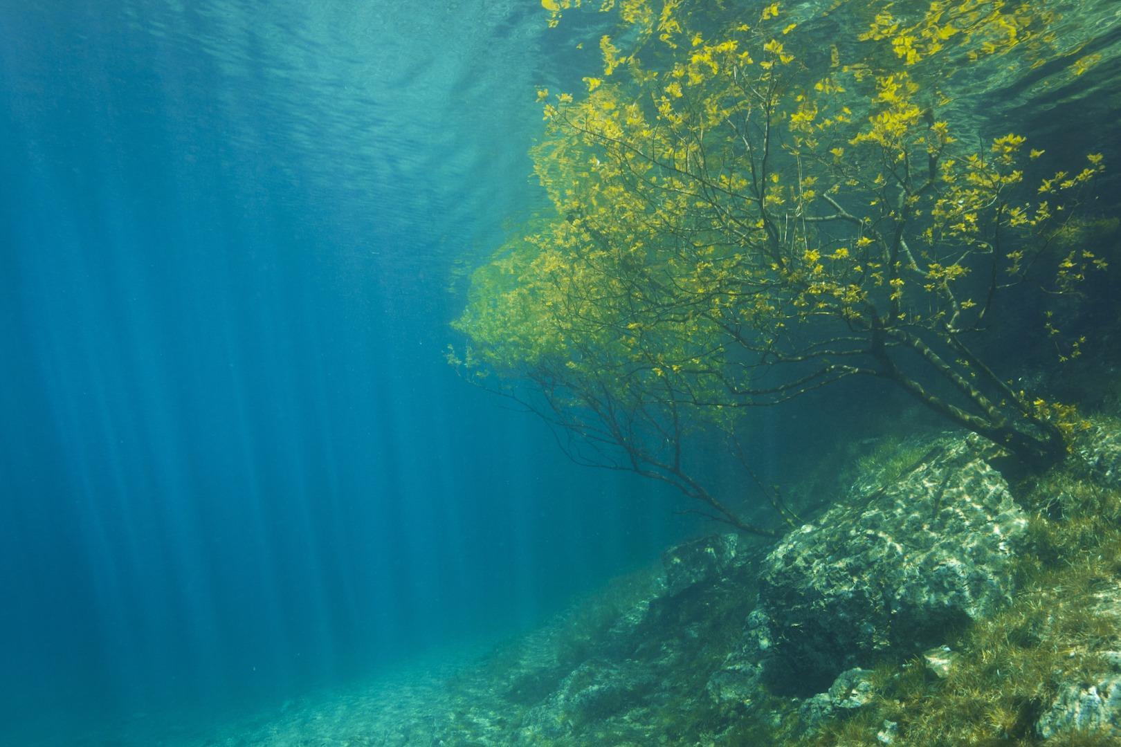 水下探秘 | 在这里,你能看到世界沉入水底的模样