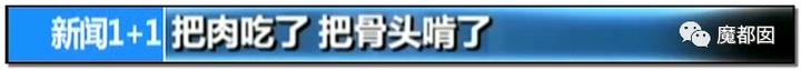 """震怒全网!云南导游骂游客""""你孩子没死就得购物""""引发爆议!158"""
