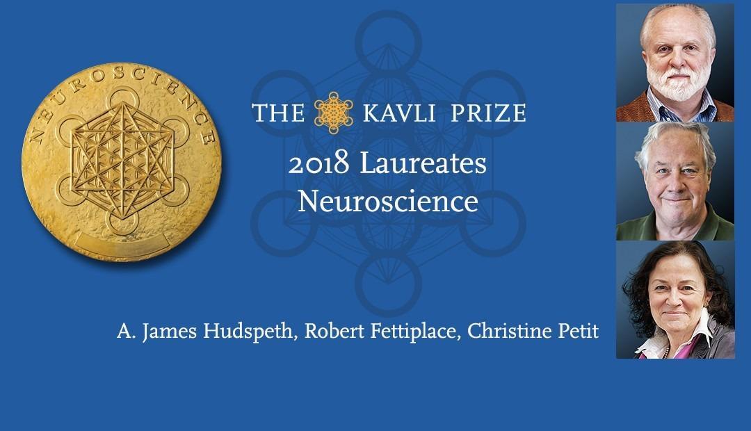 你的耳朵是如何让你听到声音的 ——卡弗里神经科学奖特别篇