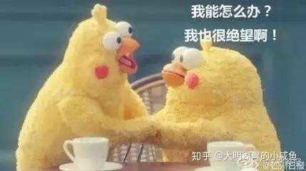 羊吃猪奶视频_动物惊奇:羊吃小鸡? - 知乎
