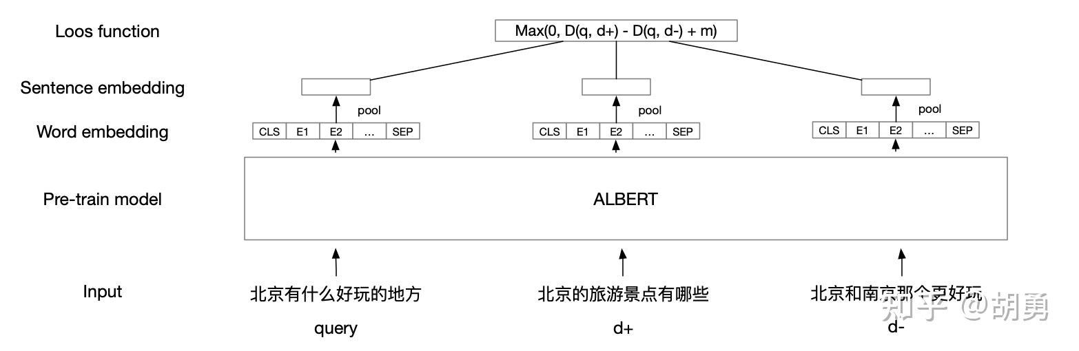 模型的结构