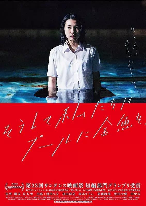 解析《金鱼少女的日记》:金鱼,泳池与政治