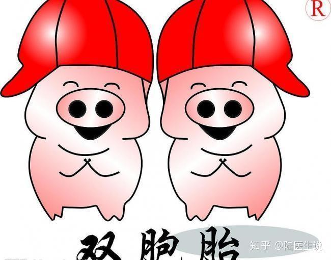 想怀双胞胎_自然怀孕,怎样才能怀上双胞胎? - 知乎