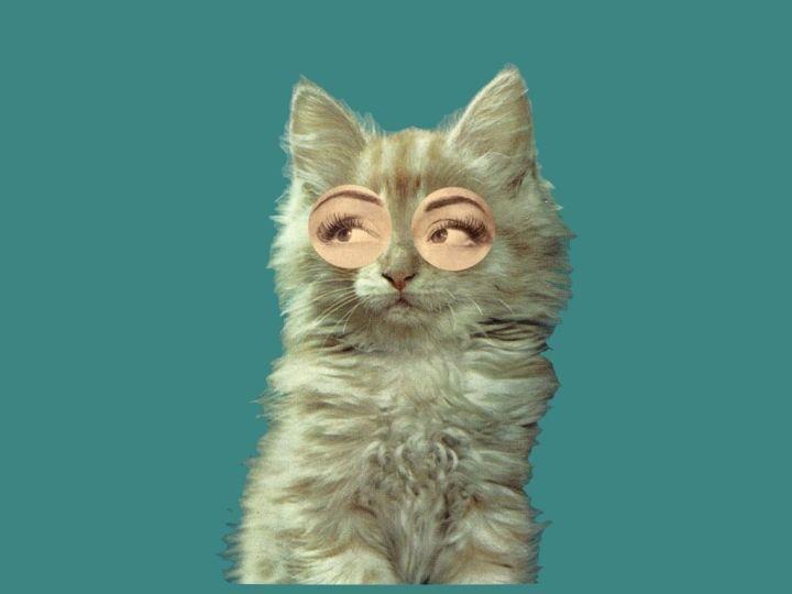 不同眼型的人怎么画眼影可以矫正眼型,显得精神有活力?| 女神进化论