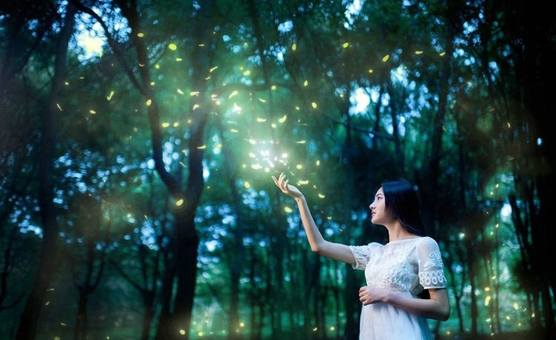 【S88】萤火虫之恋-萤火虫笔刷特效和夜光发光图层样式