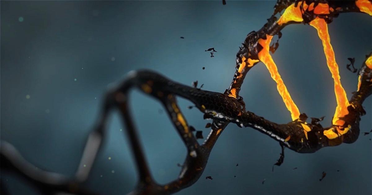 一文读懂遗传算法工作原理(附Python实现)