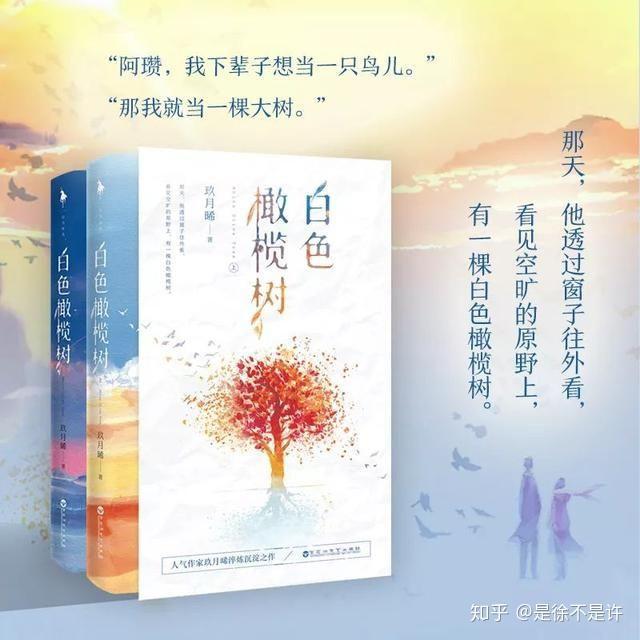 愿望树_玖月晞的《白色橄榄树》是否让你们意难平? - 知乎