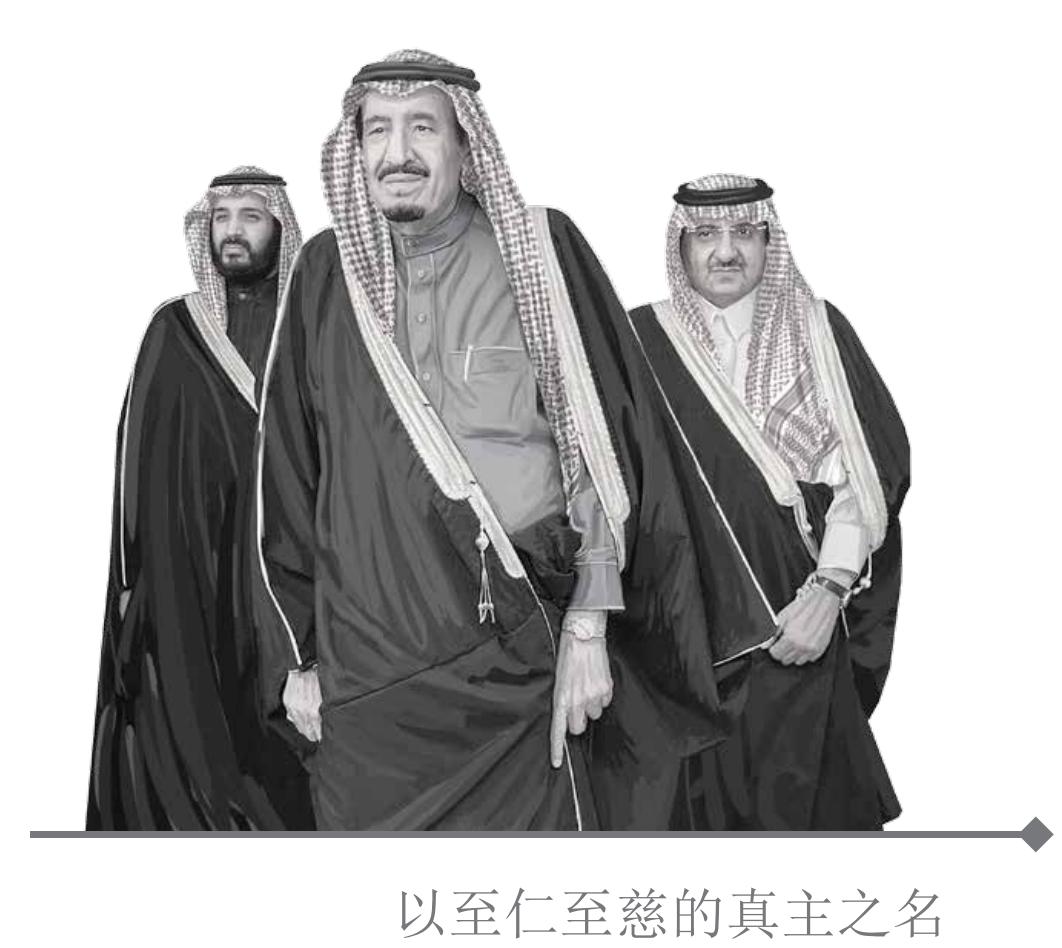 沙特 2030 愿景 (Vision 2030) 是一个怎样的计