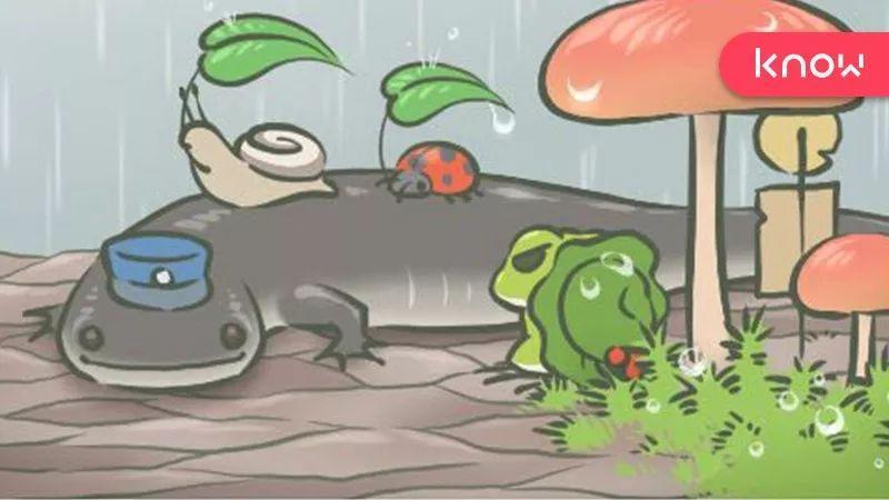 为什么你和人的关系,比你和蛙的关系要累?| 研究:快速判断一段关系是否健康