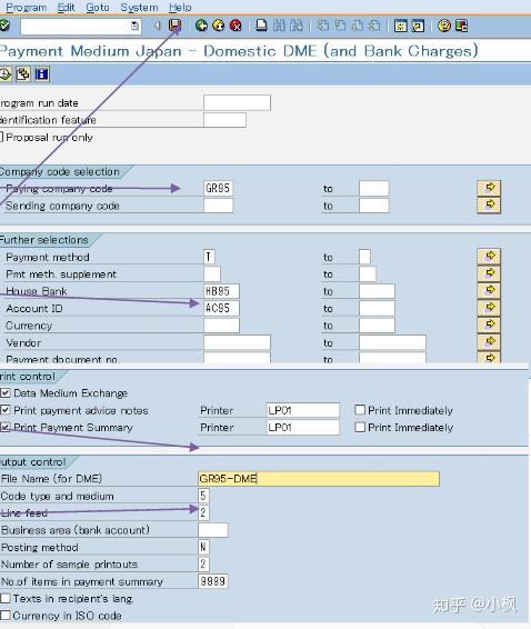 Sap F110 Printout Data Medium