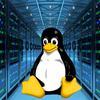 良许带你学习Linux