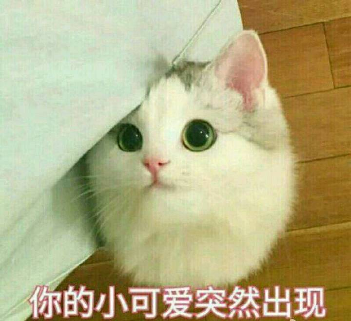 中文名字读音为yangyu,想问问大神们有没有读