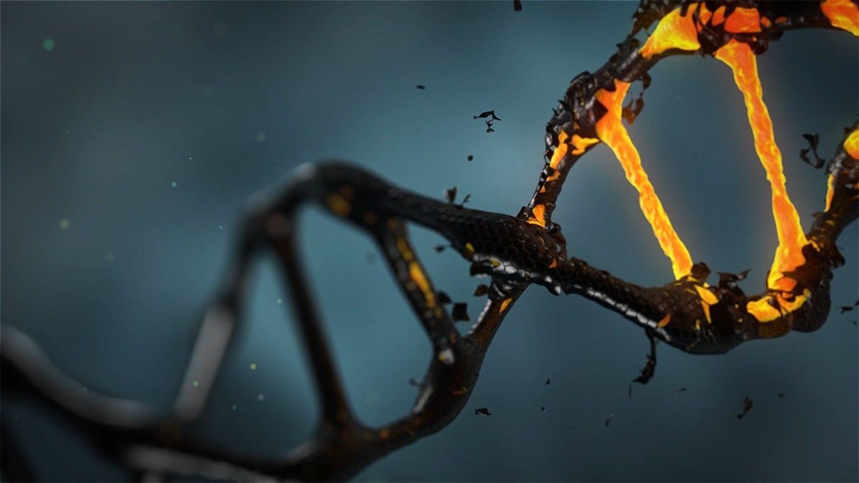 可以运用计算能力追踪癌症的传播?