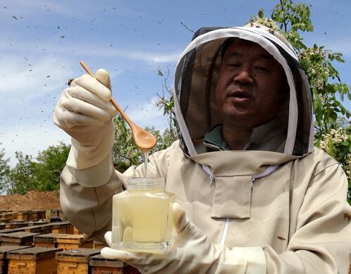 是空腹喝蜂蜜嗎?蜜糖?蜂蜜可以喝肚子?