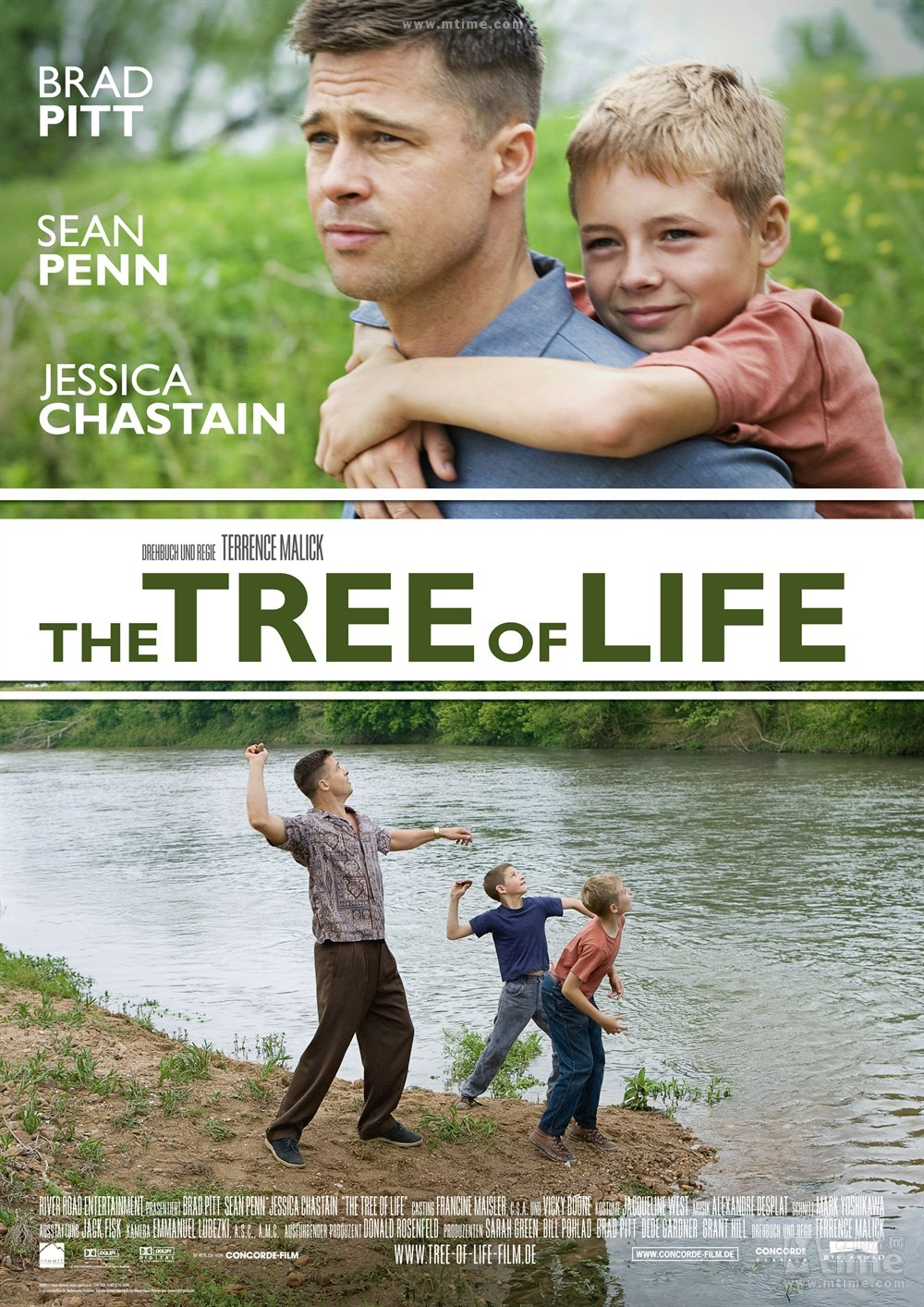 《生命之树》为什么要插入与剧情无关的大自然画面?