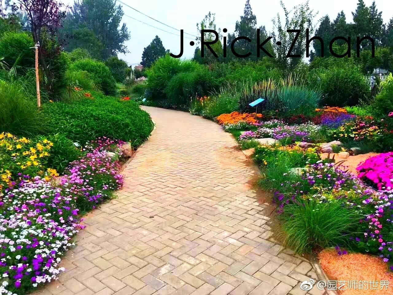 植物配景与造景_春季景观植物如何布置——花境-知乎