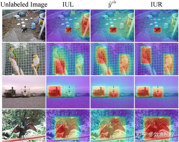 图6:对已学习的和重加权后的示例不确定性和图像分类分数的可视化。