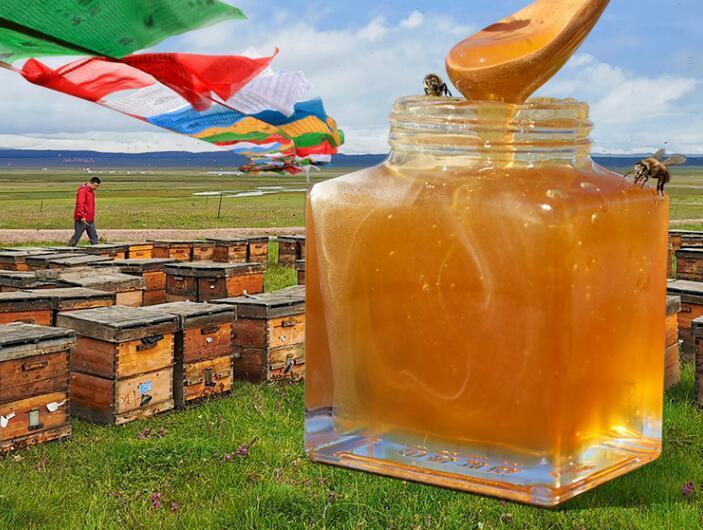 如何在线购买真正的蜂蜜?如何买真正的蜂蜜?