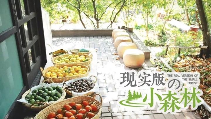 这对日本老夫妻隐居乡间50年,自己种菜做饭,羡慕哭了!