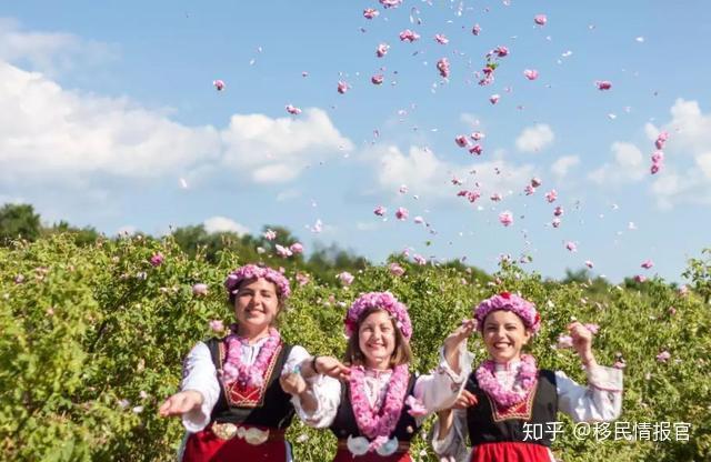 保加利亚产的玫瑰精油价格 一瓶纯玫瑰精油的价格是多少