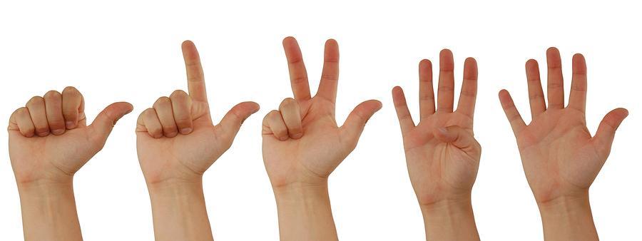 CLI Tips #3:如何知道仓库的代码行数?